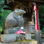 染井吉野「終了」 大島・山桜「満開すぎ」八重桜「咲きはじめ」