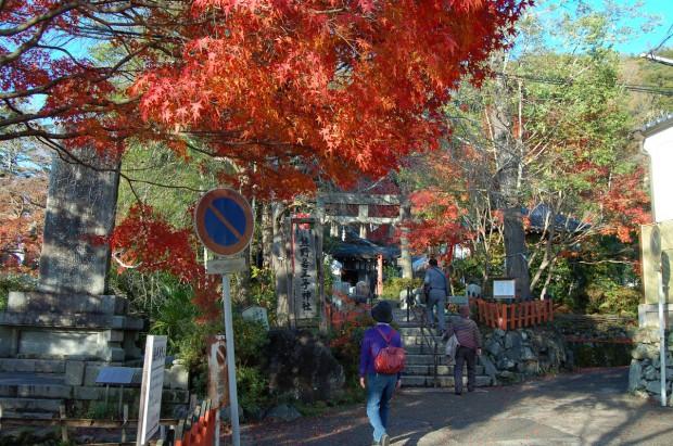 14.11.29 (84)熊野若王子神社
