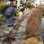 「哲学の道」 秋の大掃除