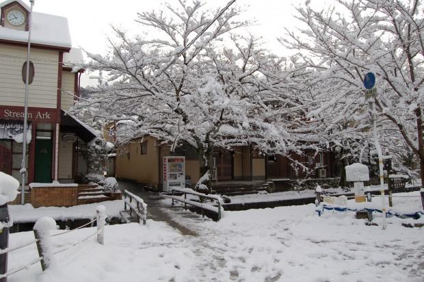 冬  15.01.02 (53)自宅前