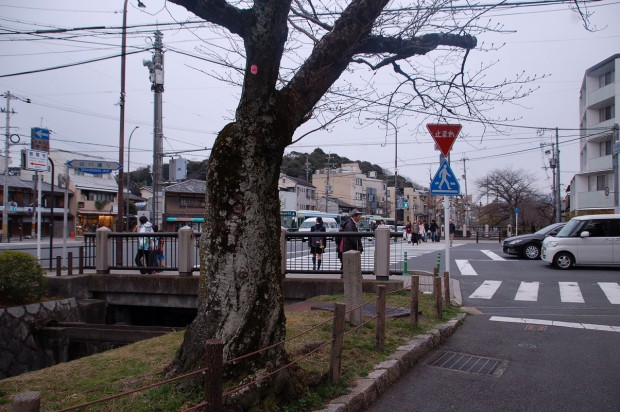 16.03.10 (60)最終ナンバー385浄土寺橋