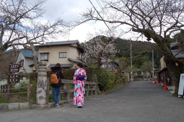16.03.25 (2)アンズ(桜橋