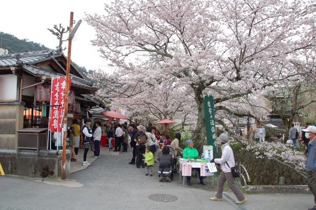 16.04.03 (6)桜まつり 弥勒院